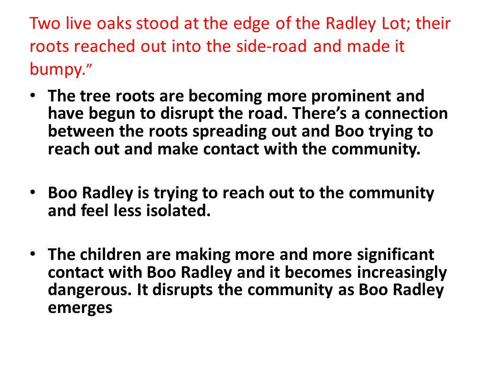 Two live oaks stood at the edge of the Radley Lot; their roots reached out into the side-road and made it bumpy.