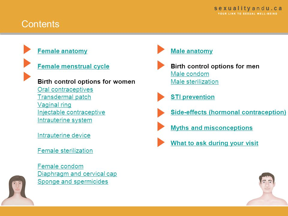 Contents Female anatomy Male anatomy