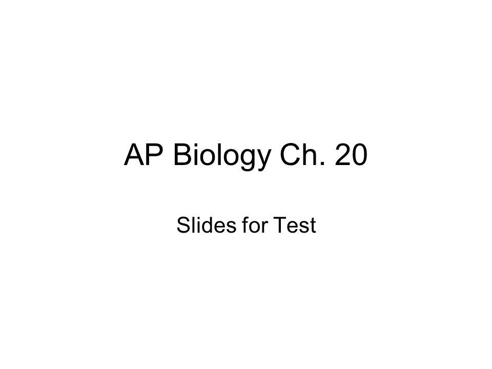 AP Biology Ch. 20 Slides for Test