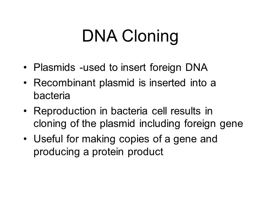 DNA Cloning Plasmids -used to insert foreign DNA