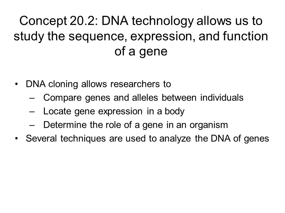 Concept 20.2: DNA technology allows us to study the sequence, expression, and function of a gene
