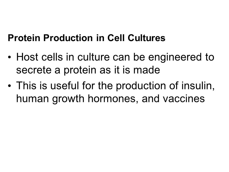 Protein Production in Cell Cultures