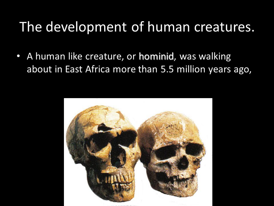 The development of human creatures.