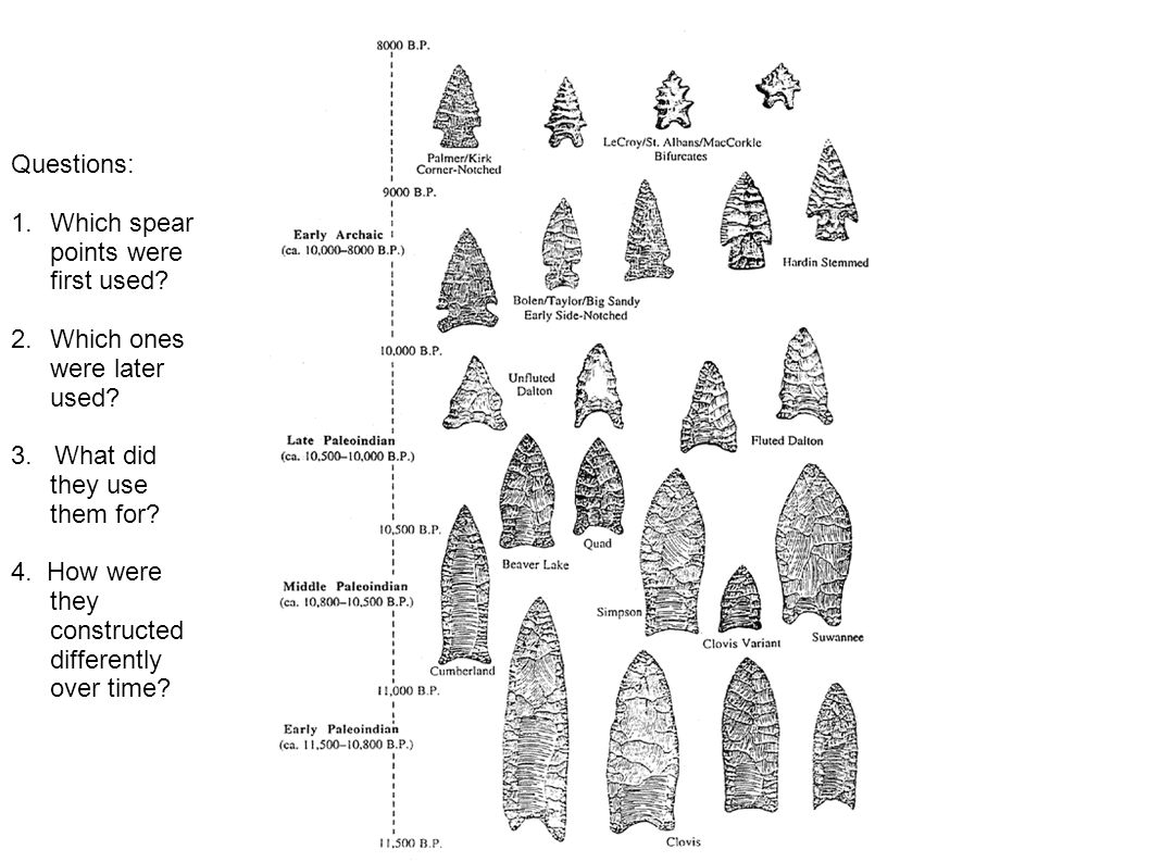 Questions: Which spear points were first used Which ones were later used 3. What did they use them for