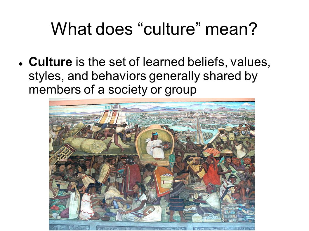 What does culture mean