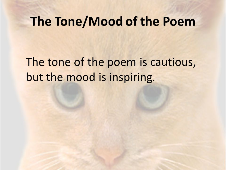 The Tone/Mood of the Poem