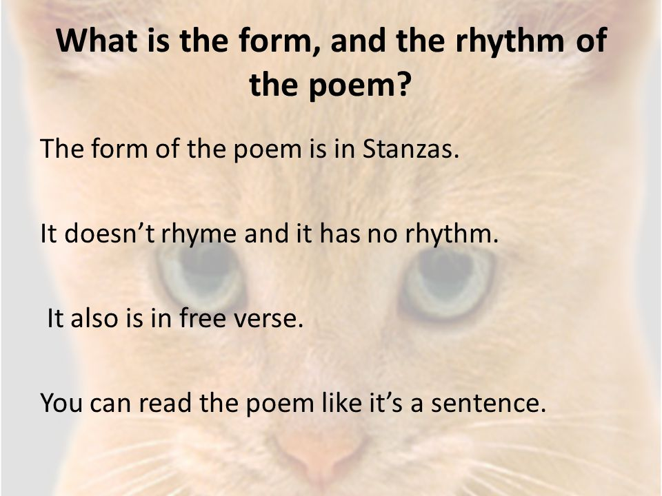 What is the form, and the rhythm of the poem