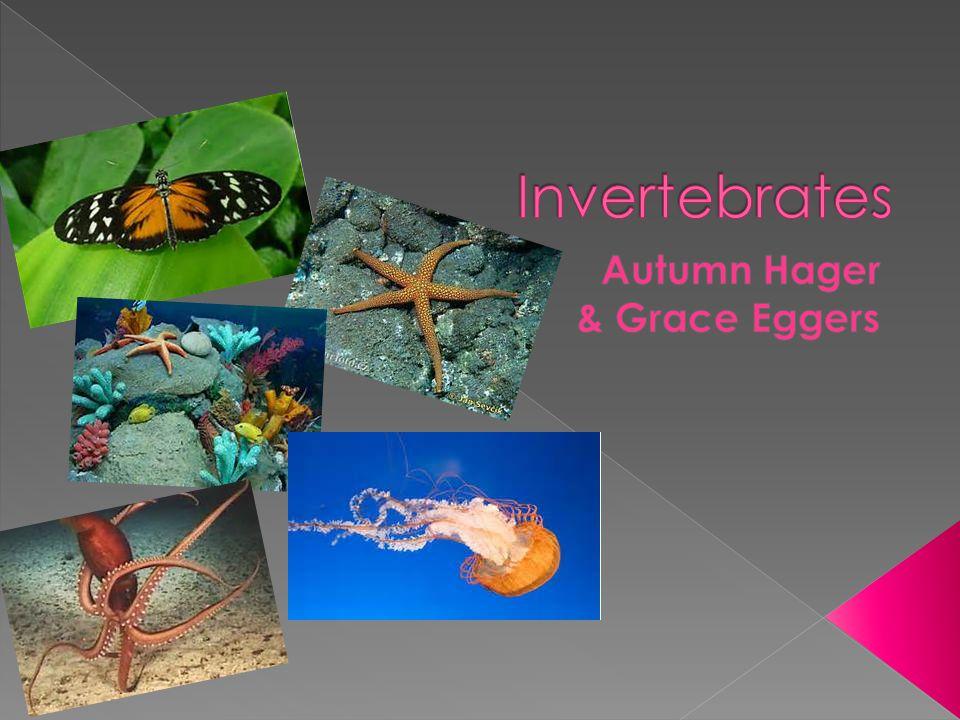 Autumn Hager & Grace Eggers
