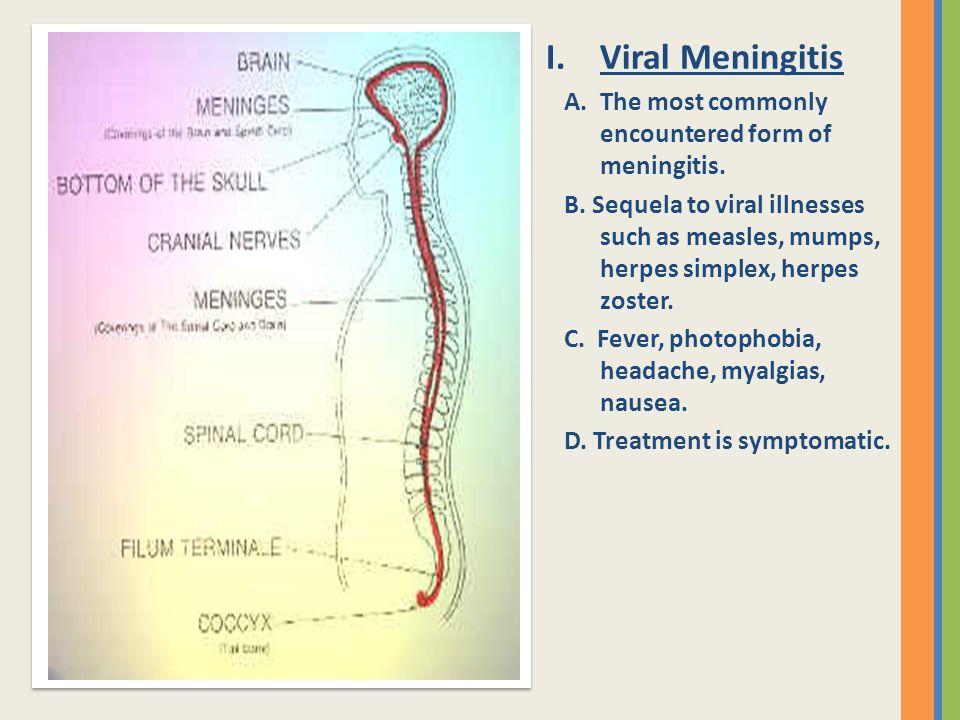 Viral Meningitis A. The most commonly encountered form of meningitis.