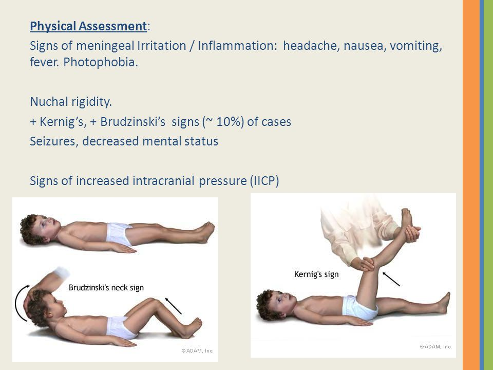 Physical Assessment: Signs of meningeal Irritation / Inflammation: headache, nausea, vomiting, fever. Photophobia.
