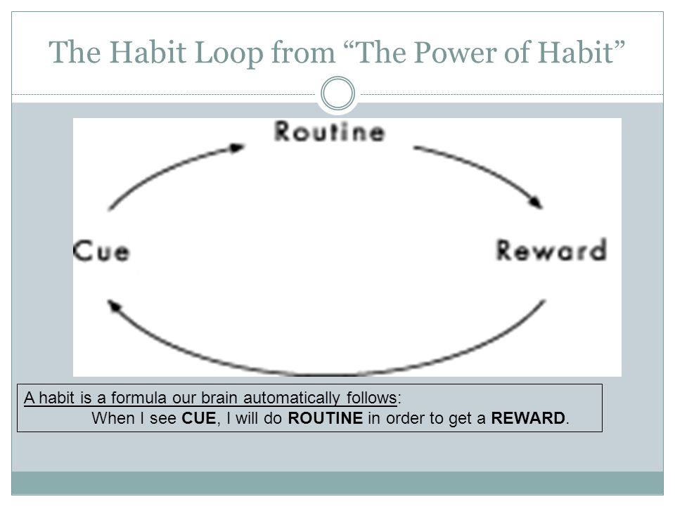 The Habit Loop from The Power of Habit