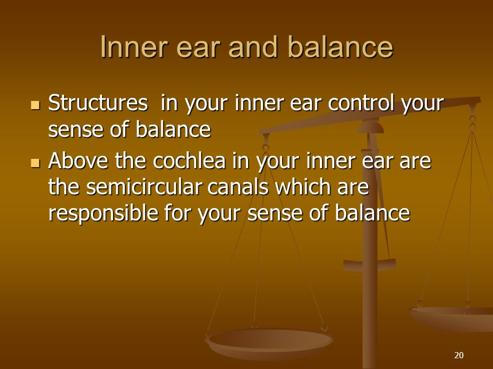 Inner ear and balance Structures in your inner ear control your sense of balance.