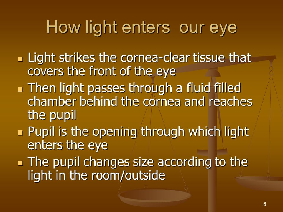 How light enters our eye