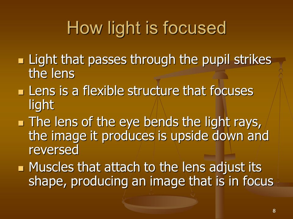 How light is focused Light that passes through the pupil strikes the lens. Lens is a flexible structure that focuses light.