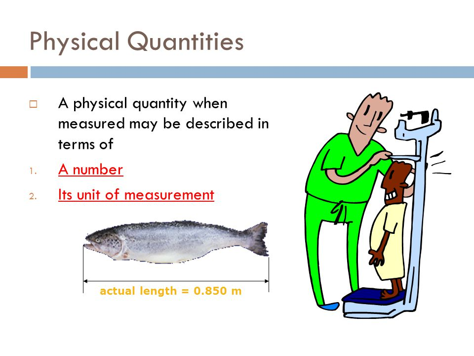 Physical Quantities A physical quantity when measured may be described in terms of. A number. Its unit of measurement.
