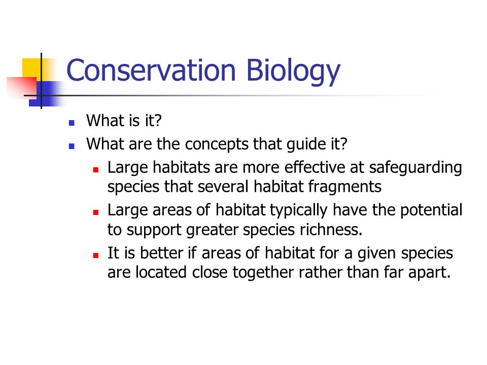 Conservation Biology What is it What are the concepts that guide it