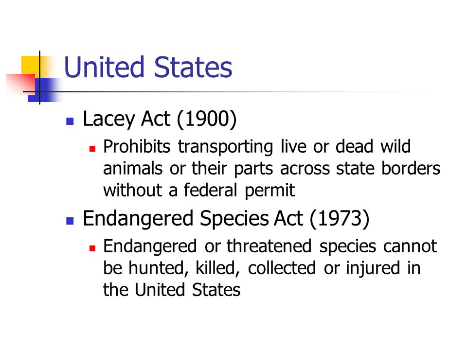 United States Lacey Act (1900) Endangered Species Act (1973)