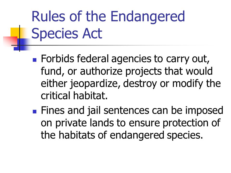 Rules of the Endangered Species Act