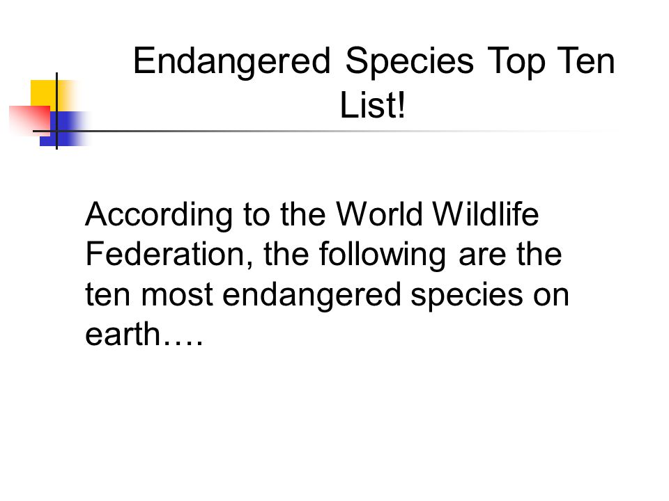 Endangered Species Top Ten List!