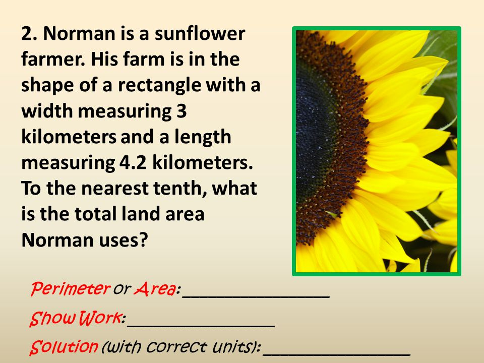 2. Norman is a sunflower farmer
