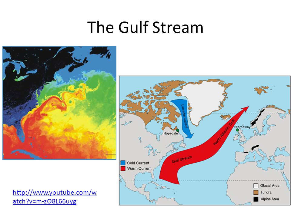 The Gulf Stream   v=m-zO8L66uyg