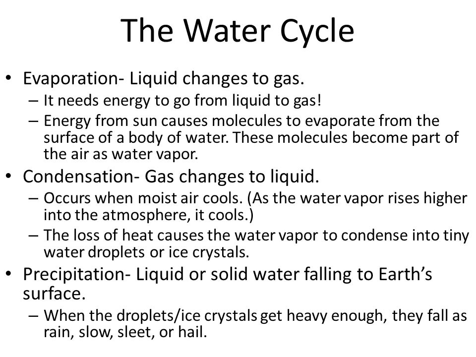 The Water Cycle Evaporation- Liquid changes to gas.