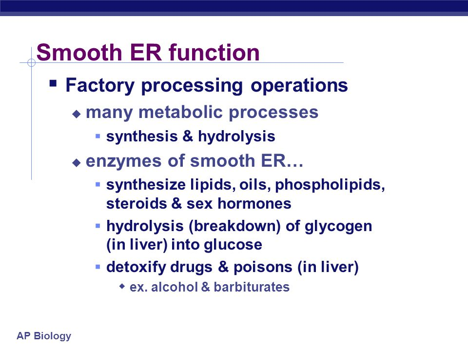 Smooth ER function Factory processing operations