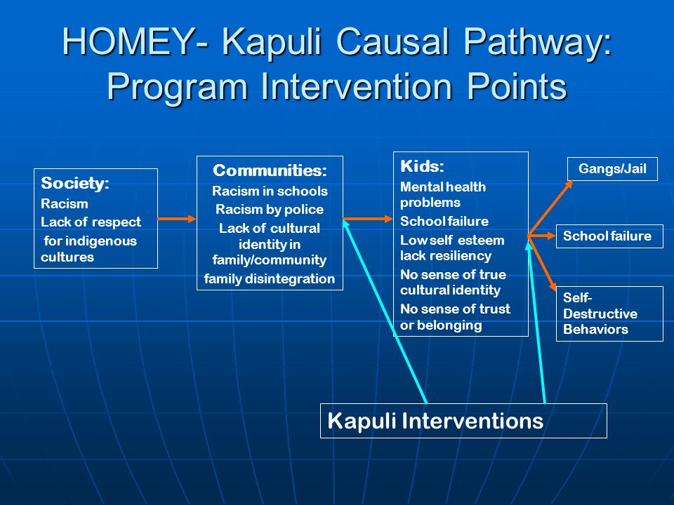 HOMEY- Kapuli Causal Pathway: Program Intervention Points