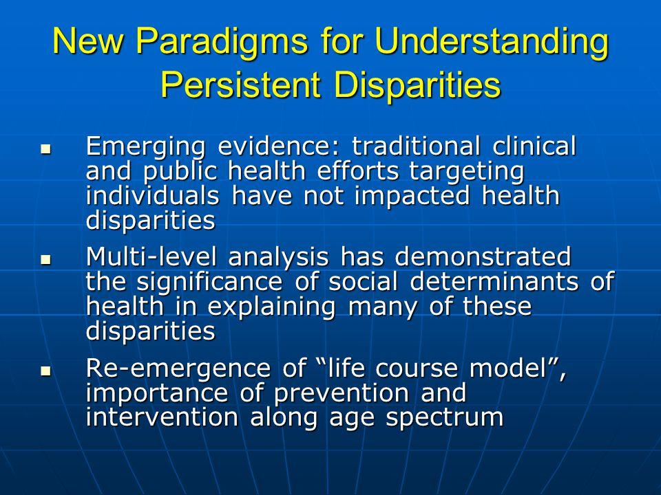 New Paradigms for Understanding Persistent Disparities