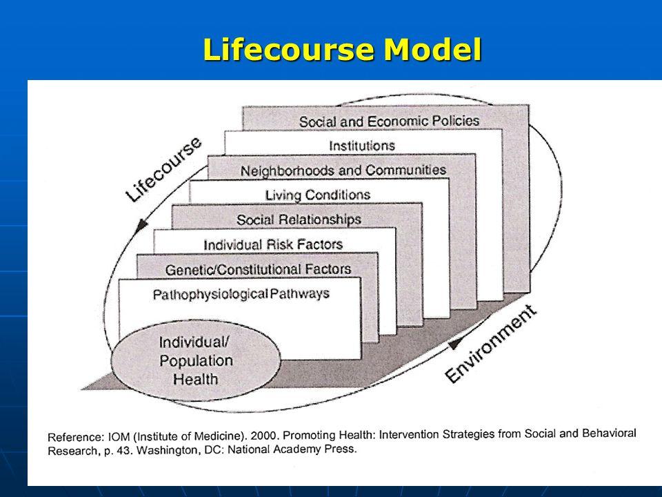 Lifecourse Model