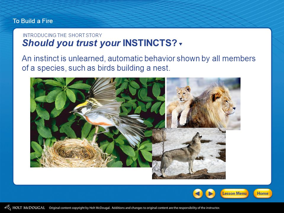Should you trust your INSTINCTS