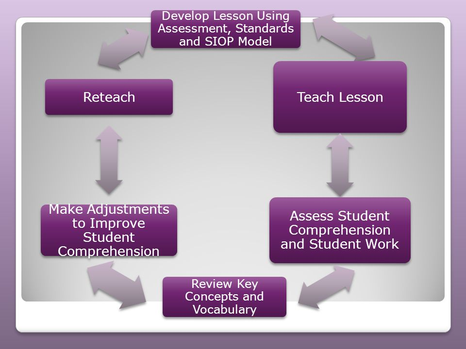 Assess Student Comprehension and Student Work