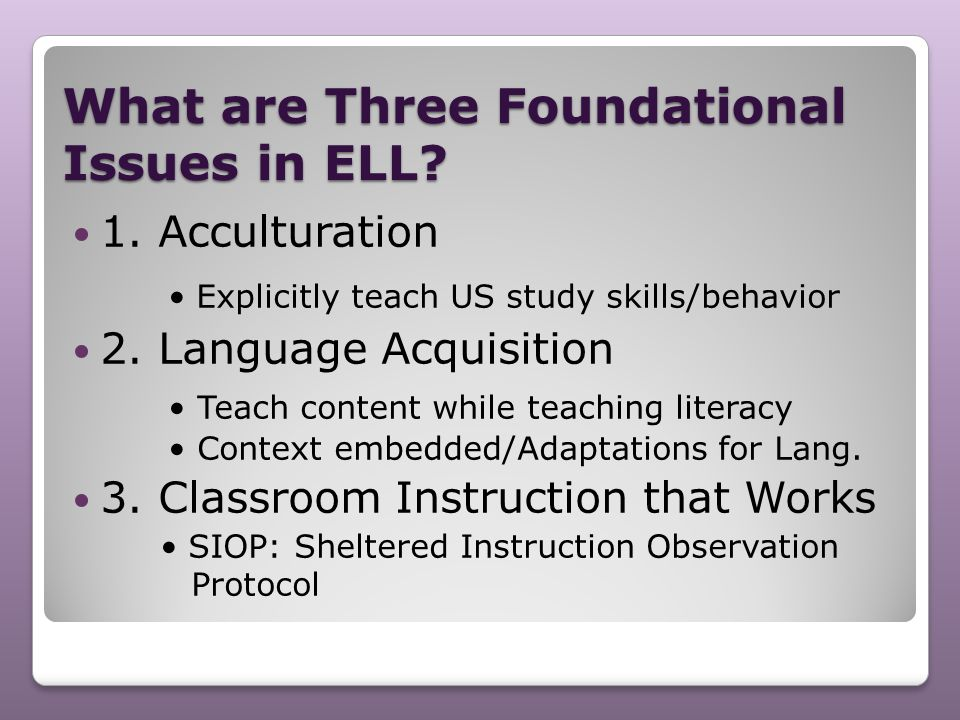 What are Three Foundational Issues in ELL