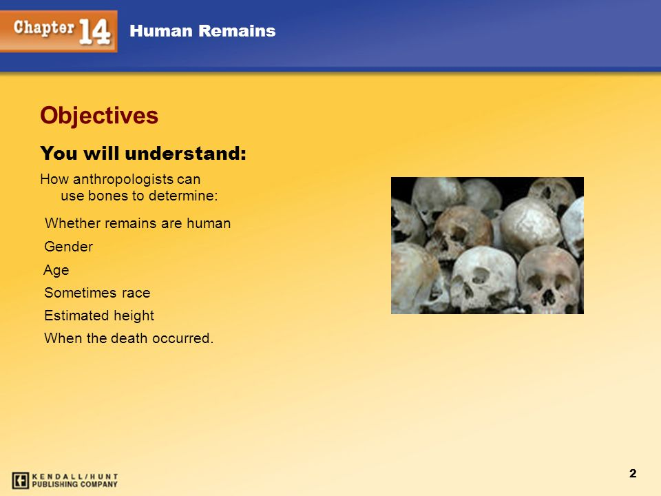 Objectives You will understand: Whether remains are human