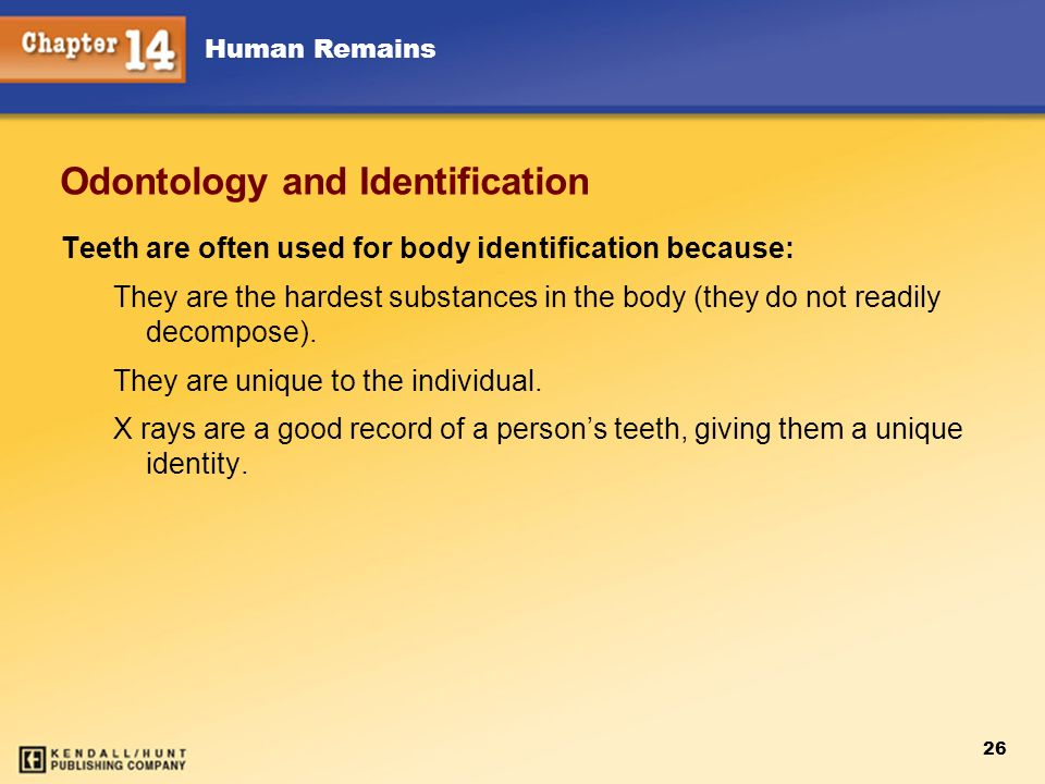 Odontology and Identification