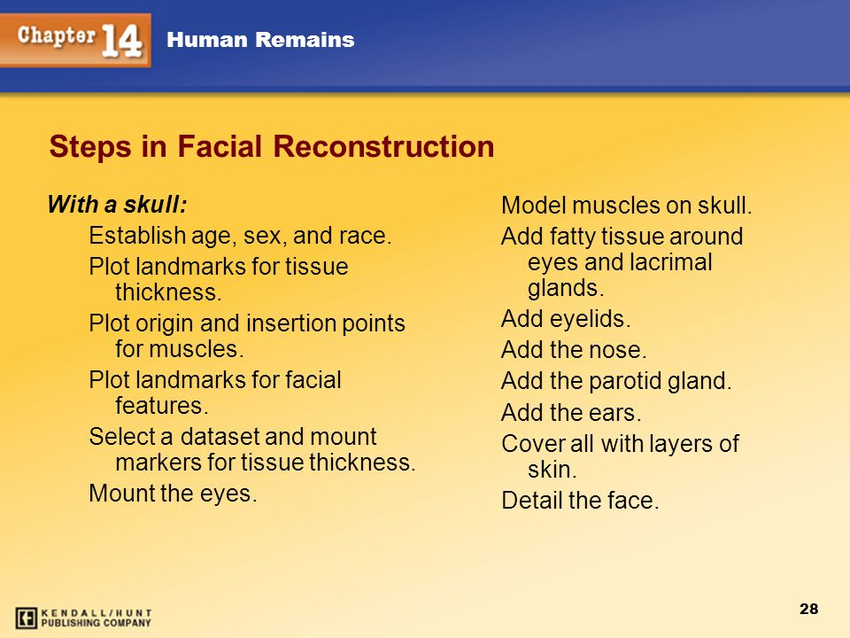 Steps in Facial Reconstruction