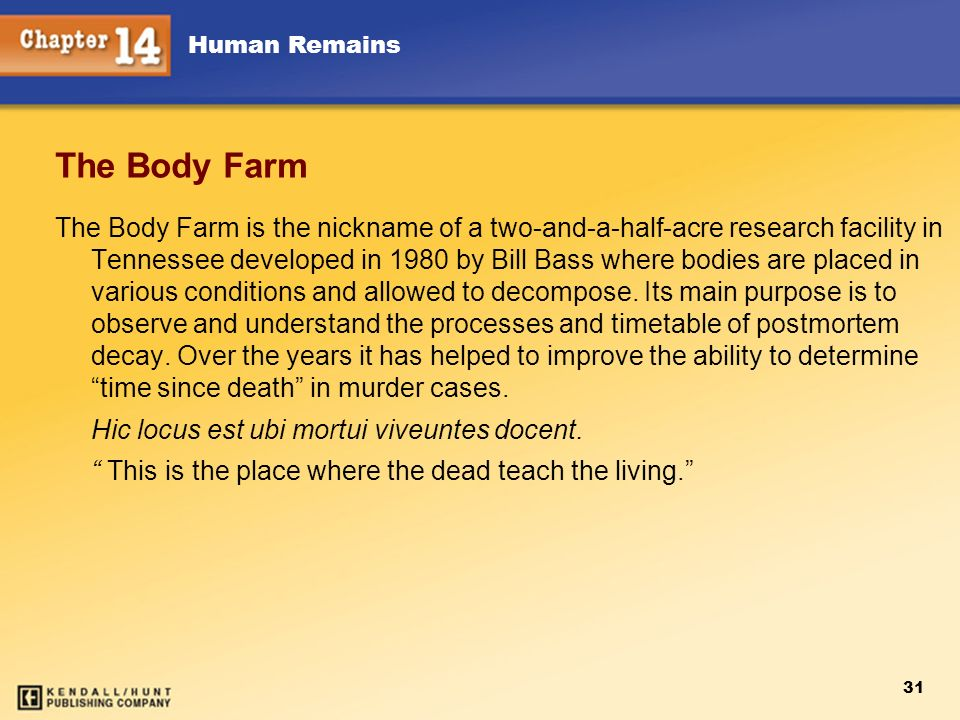 Chapter 12 The Body Farm.