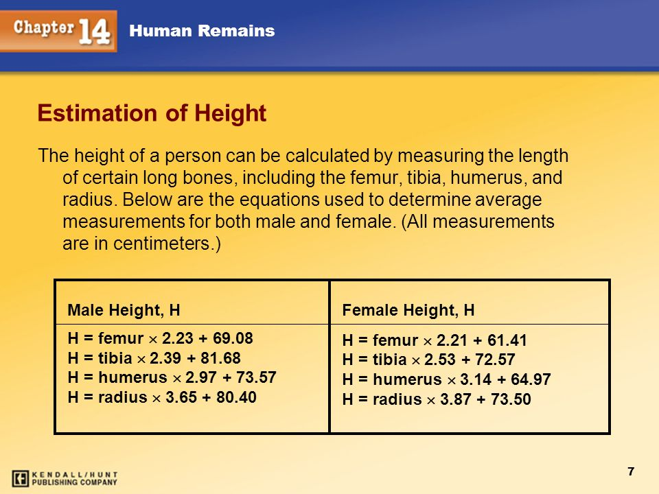 Chapter 12 Estimation of Height.