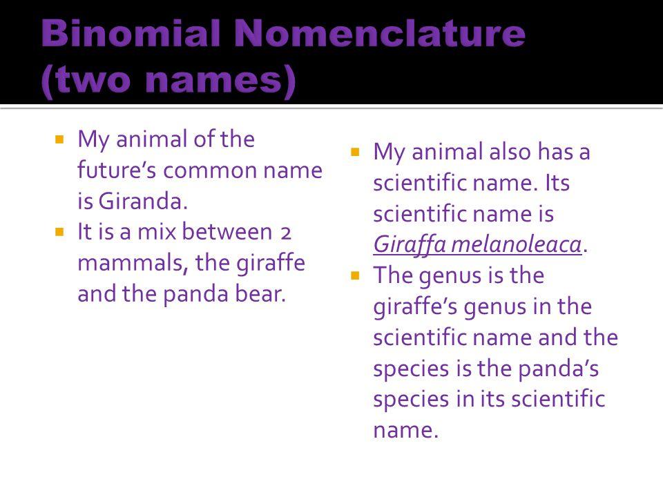 Binomial Nomenclature (two names)