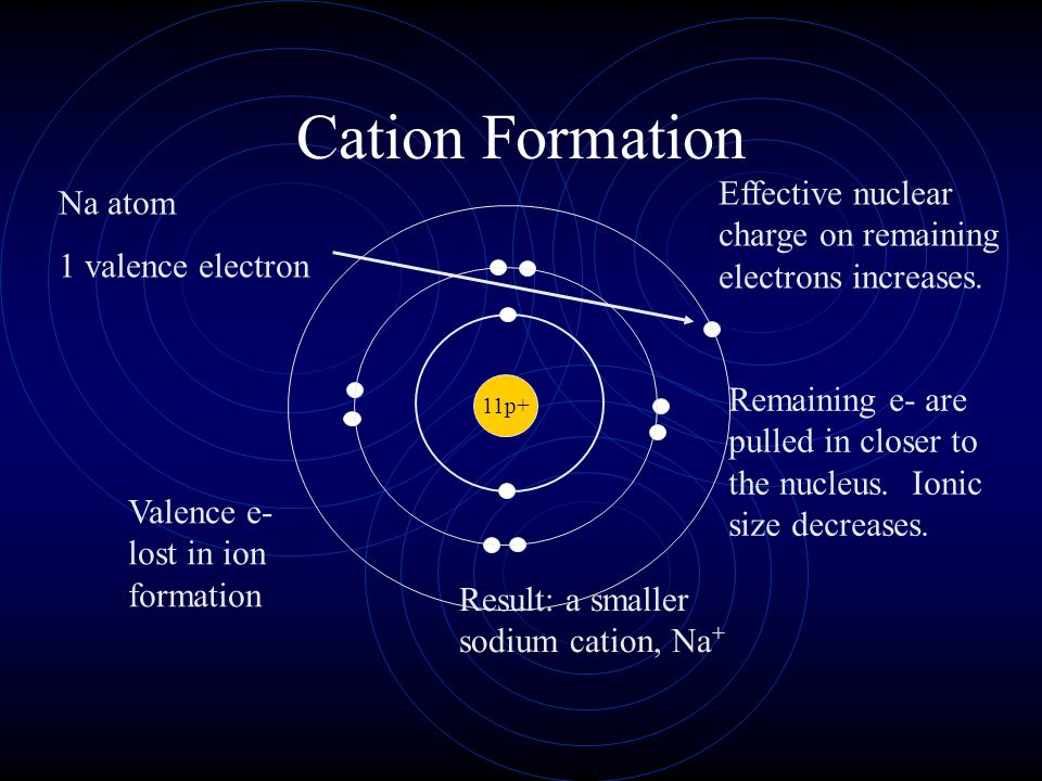 Cation Formation Effective nuclear charge on remaining electrons increases. Na atom. 1 valence electron.