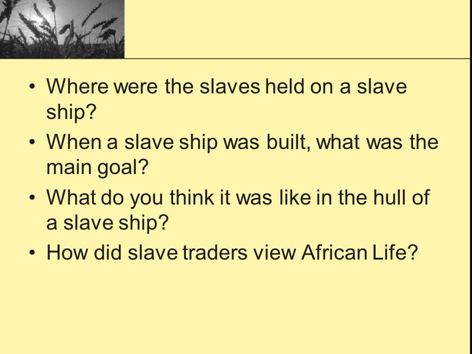 Where were the slaves held on a slave ship
