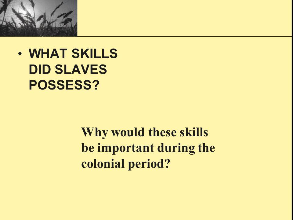 WHAT SKILLS DID SLAVES POSSESS