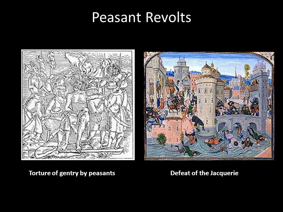 Peasant Revolts Torture of gentry by peasants Defeat of the Jacquerie