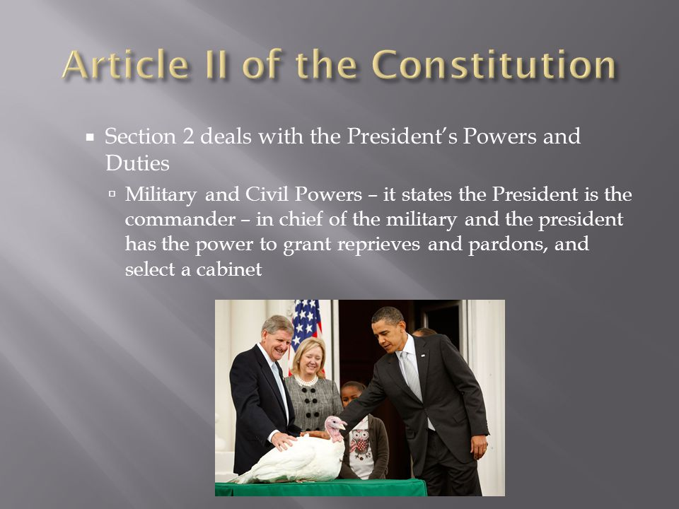 Article II of the Constitution
