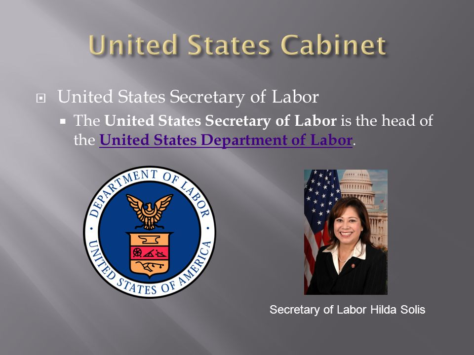 United States Cabinet United States Secretary of Labor