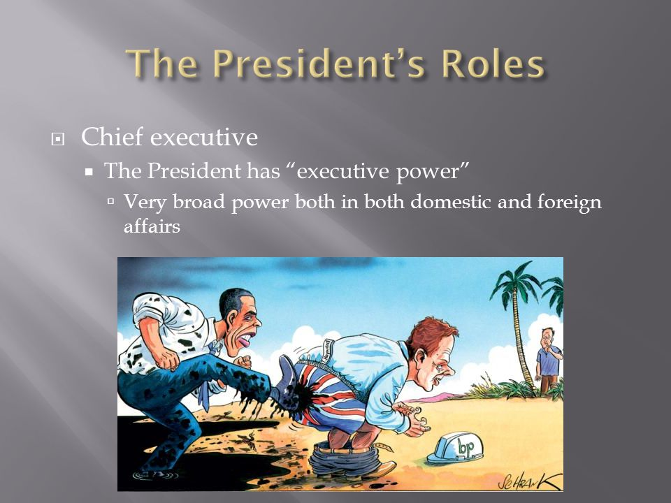 The President's Roles Chief executive