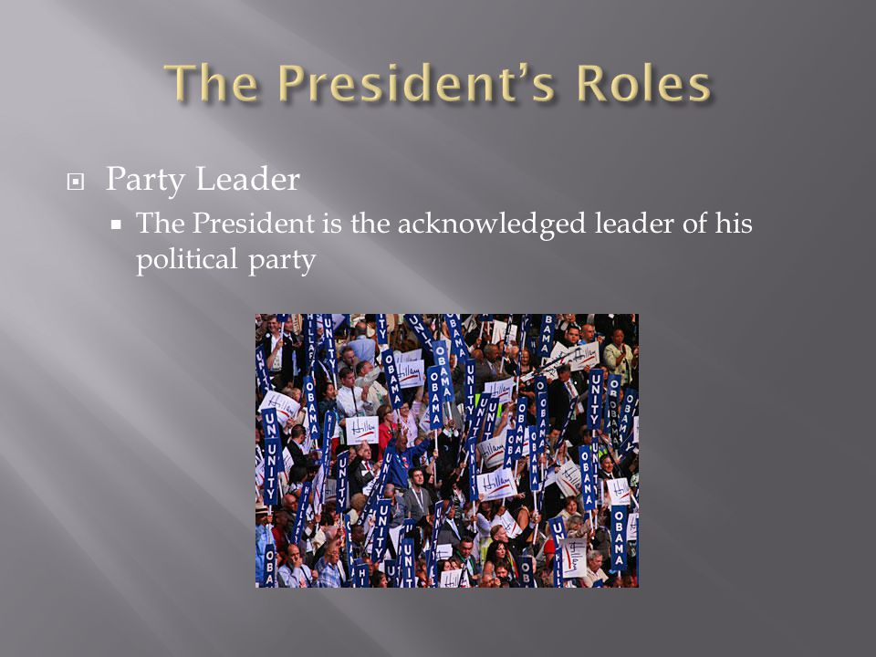 The President's Roles Party Leader
