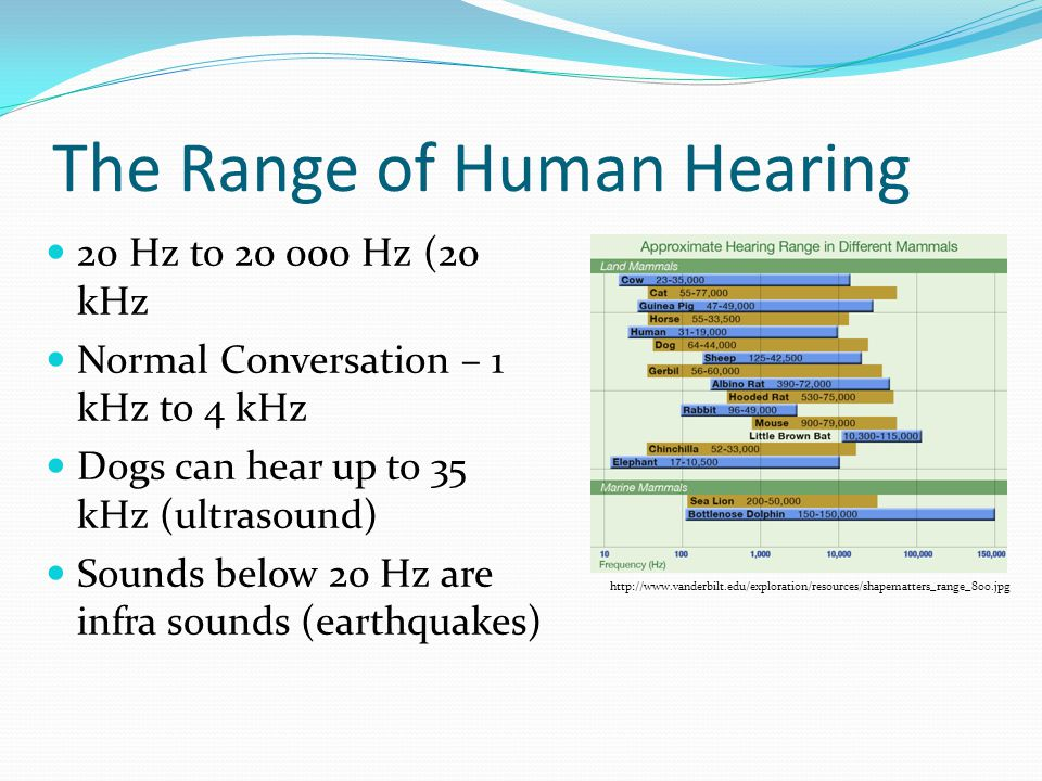 The Range of Human Hearing