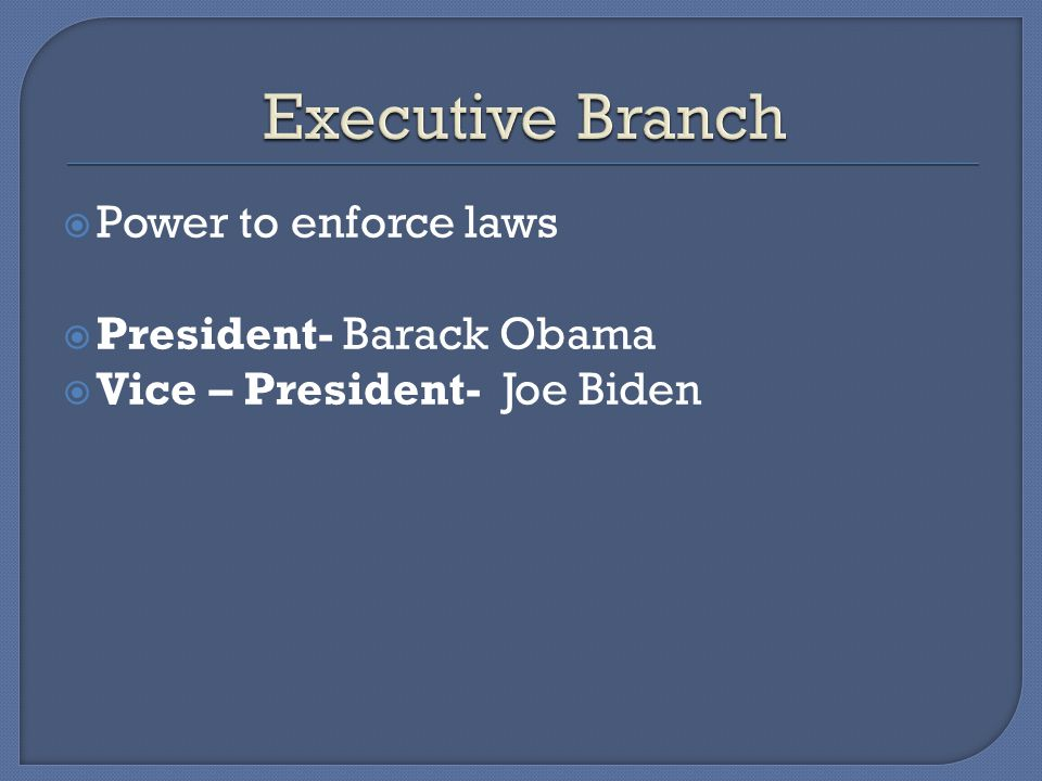 Executive Branch Power to enforce laws President- Barack Obama