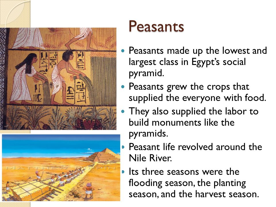 Peasants Peasants made up the lowest and largest class in Egypt's social pyramid. Peasants grew the crops that supplied the everyone with food.